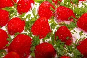 Erdbeerdessert